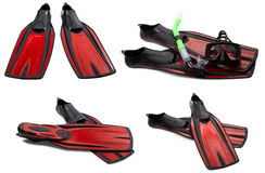 Set of red swim fins, mask and snorkel for diving. On white background Royalty Free Stock Photo