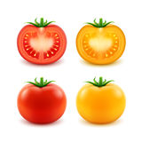 Set of Red Yellow Green Fresh Cut Whole Tomatoes Royalty Free Stock Photography