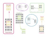 Set of Research Process Sampling from A Target Population Stock Images