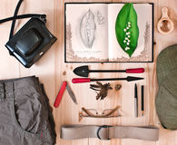 Set researcher nature. Botanical concept. Royalty Free Stock Photography