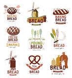 Set retro logo, etykietki, odznaki i projektów elementy piekarni i chleba, Obraz Stock