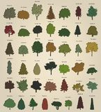 Set of retro trees. Vector Royalty Free Stock Image