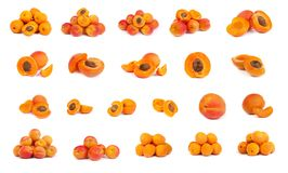 Set of ripe apricots with a half Royalty Free Stock Photo