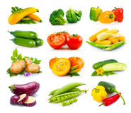 Set of ripe autumn vegetables isolated in white Stock Image