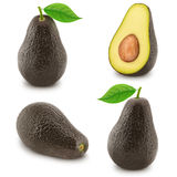 Set of ripe avocados isolated on a white Stock Image