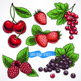 Set with ripe berries Royalty Free Stock Photos