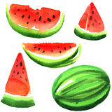 Set of ripe fresh watermelon isolated, watercolor illustration on white Stock Photos