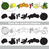 Set of ripe fruits. Find correct shadow. Royalty Free Stock Photography