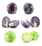 Set of Ripe Green and Blue Cabbage Isolated Stock Photos