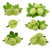 Set ripe green gooseberries with leaves (isolated) Royalty Free Stock Photography