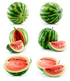 Set of Ripe Green Watermelon Isolated on White Royalty Free Stock Image