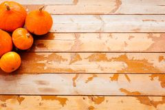 Set of ripe pumpkins on vintage shabby wooden floor. Place for text. royalty free stock image