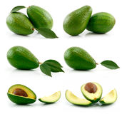 Set of Ripe Sliced Avocado Fruits Isolated Royalty Free Stock Photos