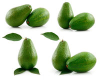 Set of Ripe Sliced Avocado Fruits Isolated Royalty Free Stock Images
