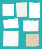 Set of ripped white and brown ruled, math notebook paper sheets. Royalty Free Stock Photo