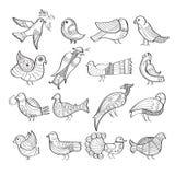 Set ręka rysujący ptaki Obrazy Royalty Free
