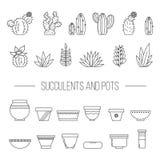 Set rośliny, kaktusy i garnki sukulentu, rLinear botaniczny vec royalty ilustracja