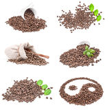 Set of roasted coffee beans isolated on a white background with clipping path. Group of pile of roasted coffee beans over a white background Stock Image