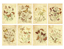 Set Roczników Osiem Etykietek Stylowych Motylich