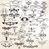Set roczników wektorowi kaligraficzni elementy dla projekta Zdjęcie Stock
