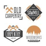 Set rocznik ciesielka, etykietki, odznaki, emblematy i logo, woodwork i mechanika, ilustracji