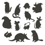 Set of rodent  gray silhouettes. Vector illustration, isolated on a white background. Royalty Free Stock Image