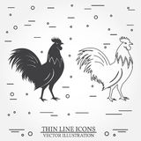 Set of rooster silhouette and thin line icons. Royalty Free Stock Images