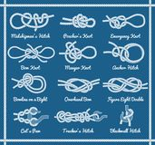 Set of rope knots, hitches, bows, bends. Set of rope knots, hitches, bows bends. Decorative vector design. Part 3 of 3 Royalty Free Stock Photos