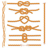 Set of ropes and knots. Vector set of ropes and knots on a white background Stock Photo