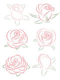Set of roses Stock Photos