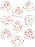 Set of roses. A set of nine buds of roses Royalty Free Stock Photos
