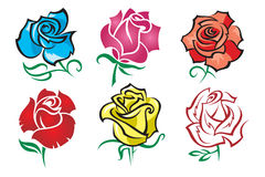 Set of roses. A set of six different colors of roses Stock Photo