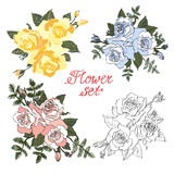 Set of 4 roses. Collection of colored roses.Floral composition vector illustration