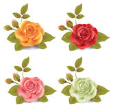 Set of roses. Collection of photo realistic roses in four colors vector illustration