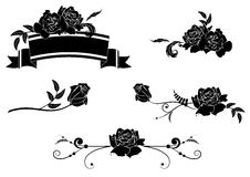 Set of roses Stock Images