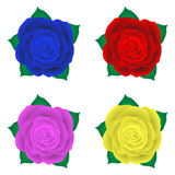 Set of roses, rose illustration, blue red rose pink yellow rose Stock Photos