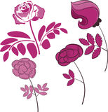 Set of roses. Vector illustration. Stock Photography