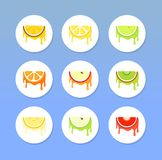 Set of Round Fruit Icons Royalty Free Stock Photography