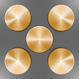 Set of round golden disks. With brushed metal textures and different angles of reflection isolated on gray background Stock Image