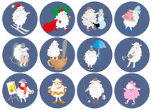 Set of round stickers with a picture of a sheep. vector graphics Stock Photos
