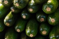 Set row of zucchini green fresh mature vegetables long fruits green dark end stack ingredient stew background backing stock photography