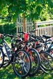 Set rowery górscy w parkowym czekać na odjeździe przejażdżka Jechać na rowerze sport plenerową aktywność obraz royalty free