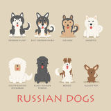 Set of russian dogs Royalty Free Stock Images
