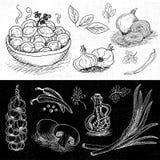 Set rysujący na blackboard jedzeniu kreda, pikantność Obraz Royalty Free