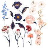 Set rysuje Kwiecistego kartka z pozdrowieniami z kwitnienie ogródem f ręka Zdjęcie Royalty Free