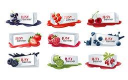Set słodcy jagodowi wektorowi sztandary ilustracji