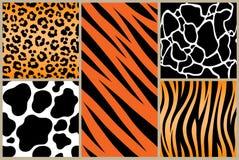 Set safari jungle animal fur stripe animals bengal tiger giraffe texture pattern white black orange. Print. EPS. Vector image illustration vector illustration