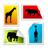 Set of safari post stamps Royalty Free Stock Image