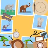 Set for safari on a yellow background vector illustration