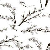 Set of sakura japan cherry pattern Stock Image